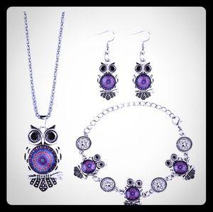 Silver color owl set